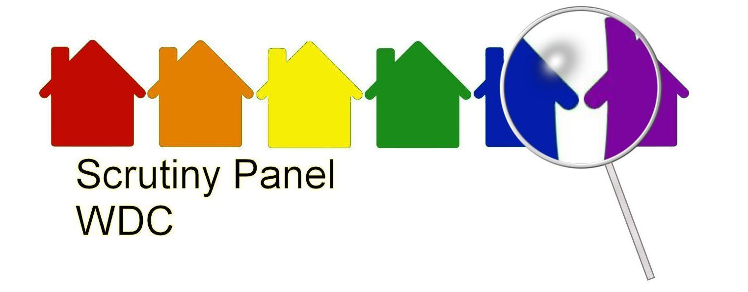 scrutiny panel logo2 cropped .jpg